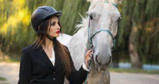 unterschaetzte Pferdeintelligenz