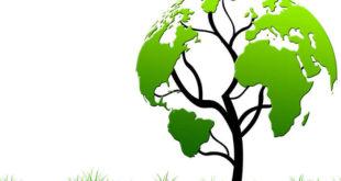 umweltfreundliche Kühlgeräte